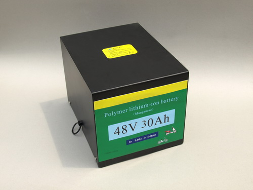 48V Polymer Lithium-Ion Batter/Battery Packs Made in China E-Stars